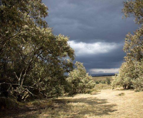 Rainy and leaving season – choosing to love-