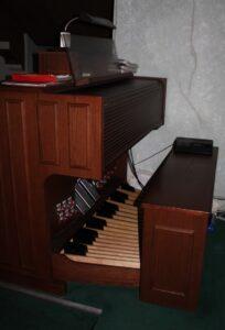 organ-cropped