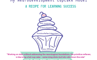 Neurodevelopment Cupcake Model