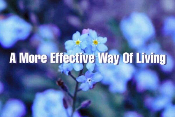 A more effective way of living.