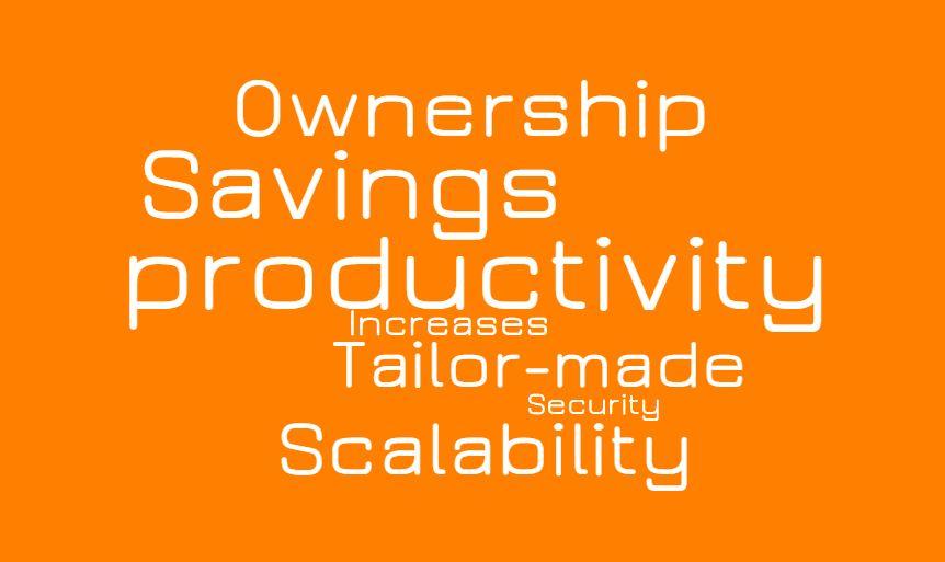 advantage of Custom software development