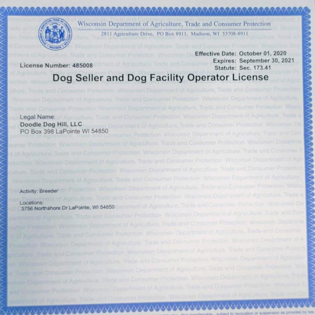 2021 WI Dog License