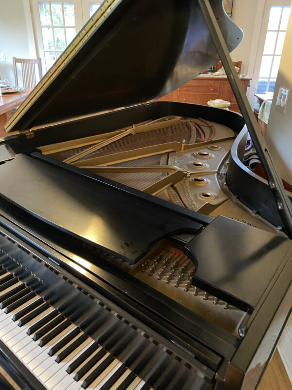 Signed Steinway body front