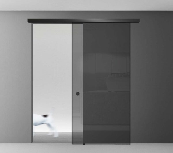 Image shows a glass sliding door with stainless steel track