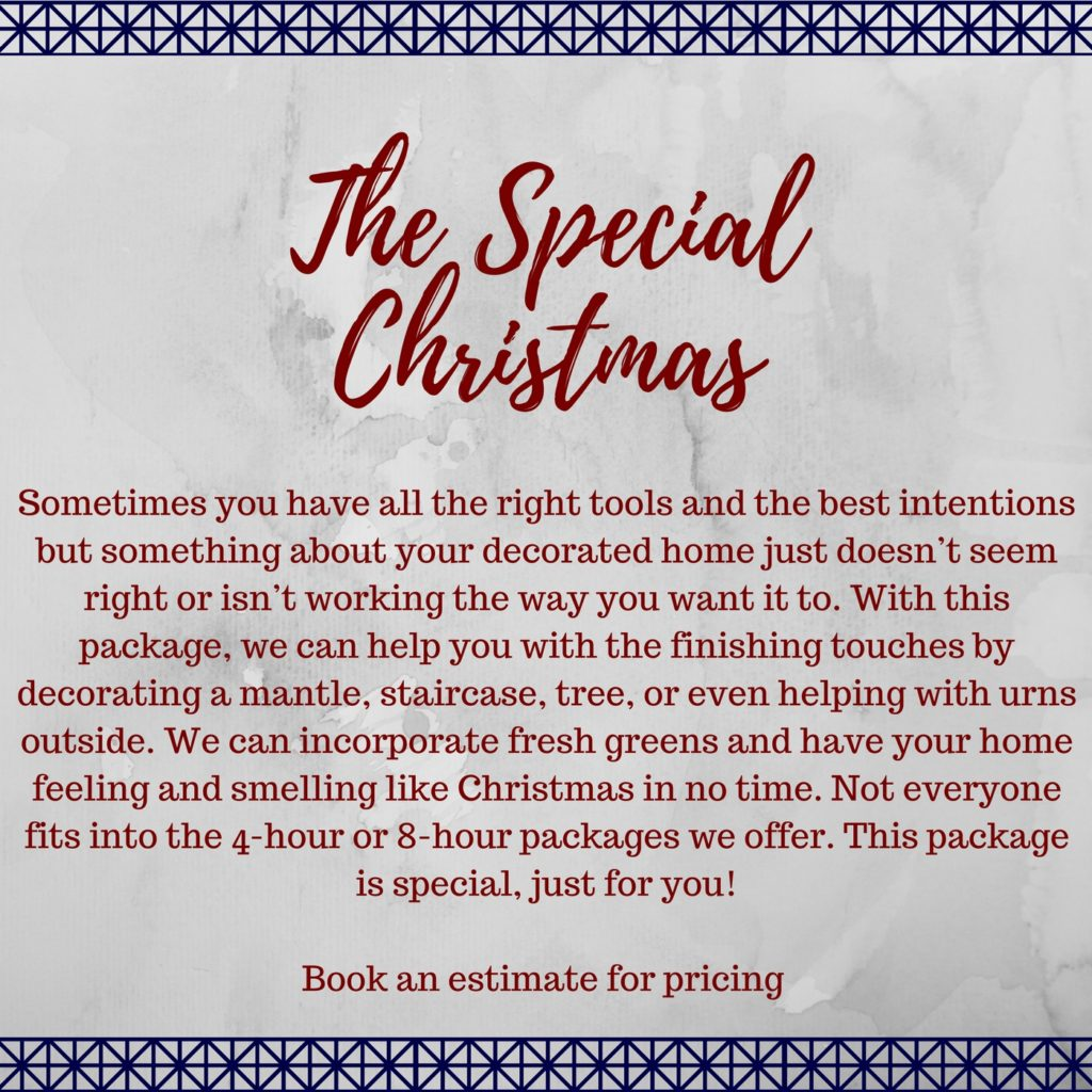 | The Special Christmas |