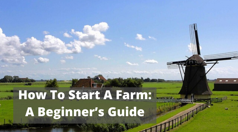 How To Start A Farm: A Beginner's Guide