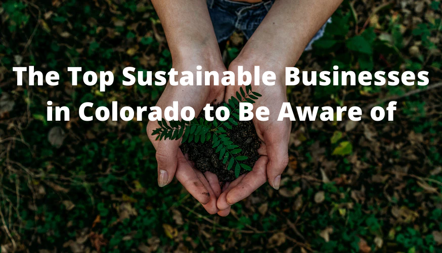 The Top Sustainable Businesses in Colorado to Be Aware of