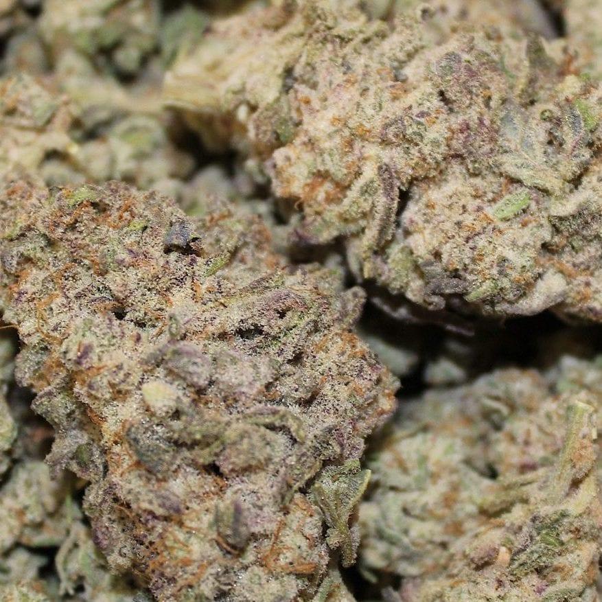 Mac Buds