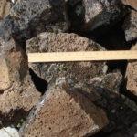 Black Lichen Wall Rock