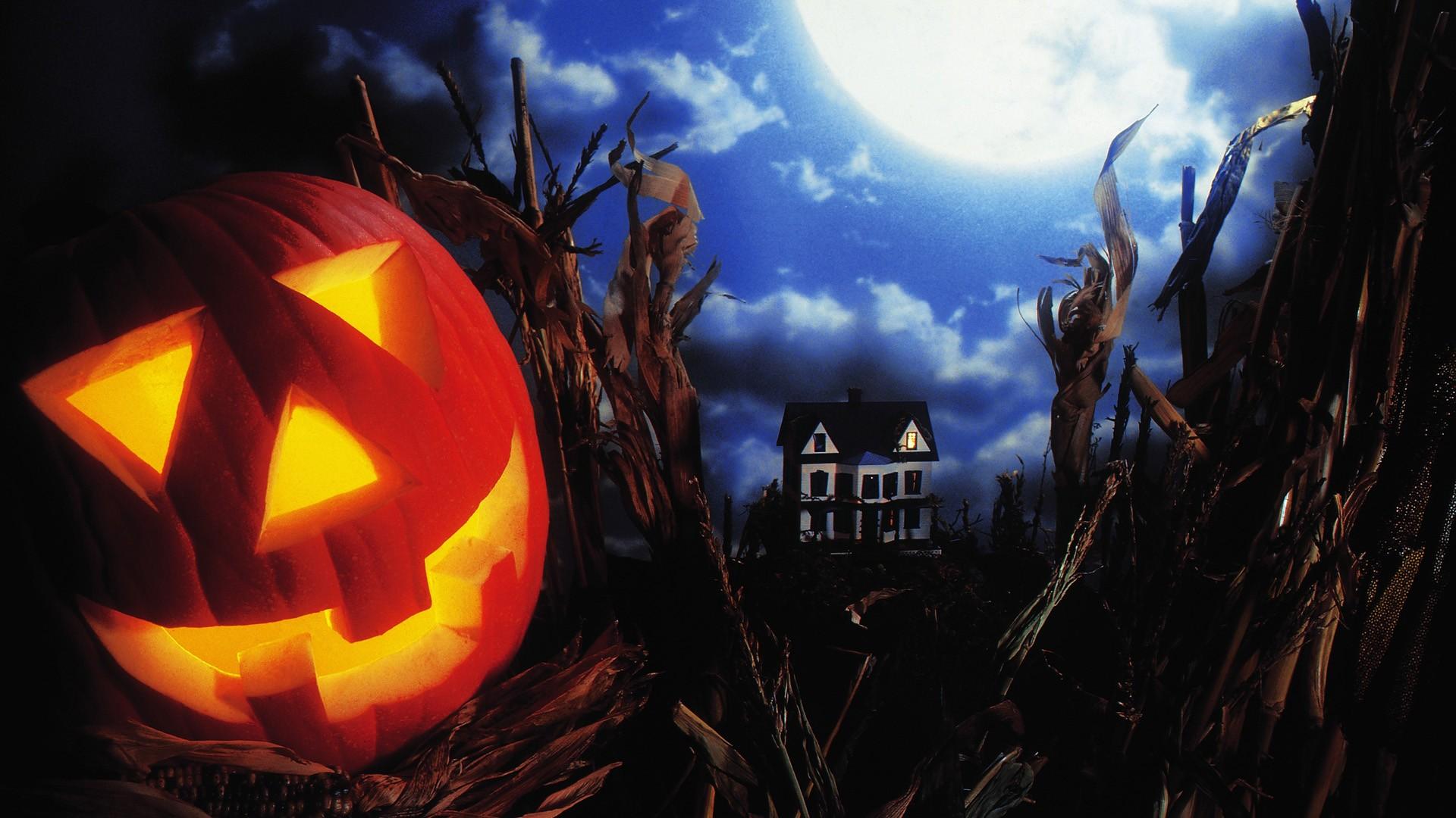 Halloween Excitement – Weekend Getaway