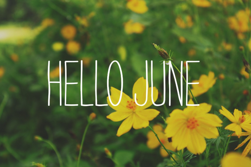 What's Coming Up in June