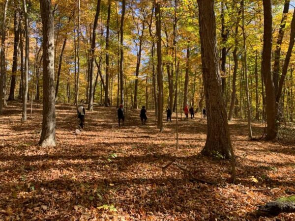 Explorer Yoga | Hike and Bend at Buzzard's Roost