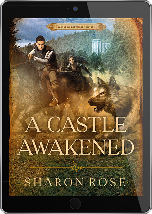 A Castle Awakened