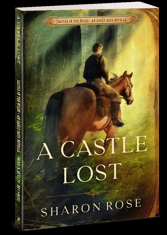 Book: A Castle Lost