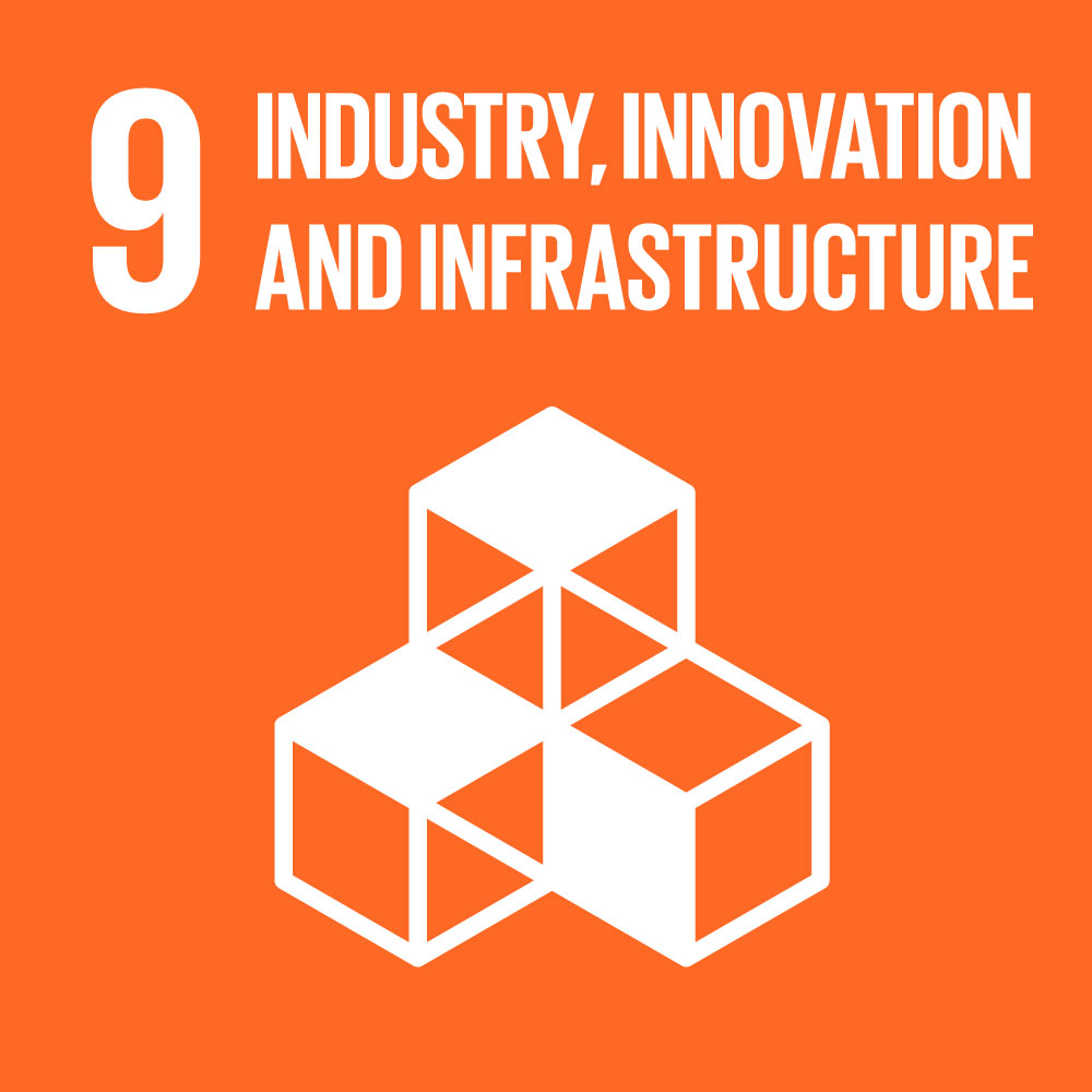 SDG9 Industry Innovation and Infrastructure