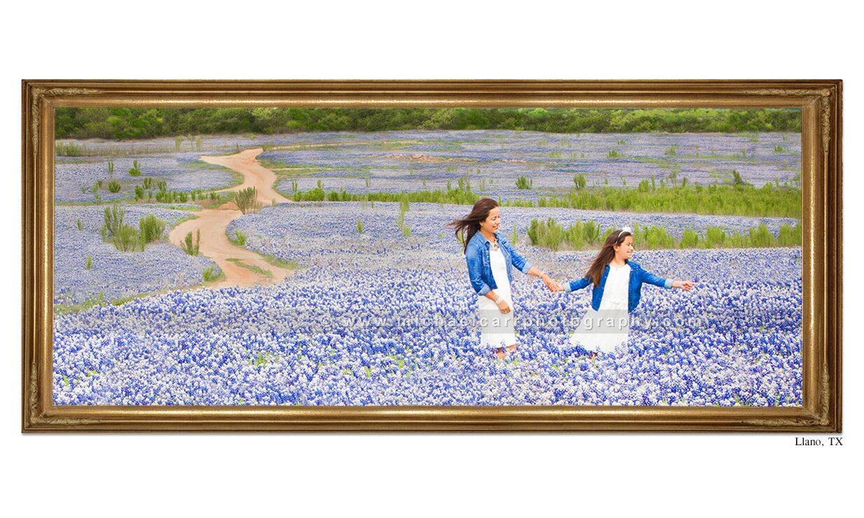 Texas Bluebonnet destination Family Portraits