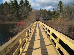 Wetland walkways with helical piers for foundation support