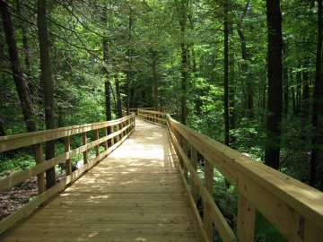 Norwell bike path with elevated boardwalks using Chance helical piers to support foundation through wetlands