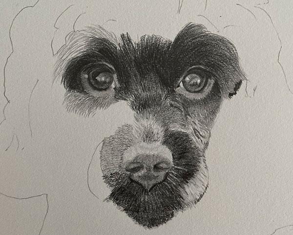 Winnie Progress 2