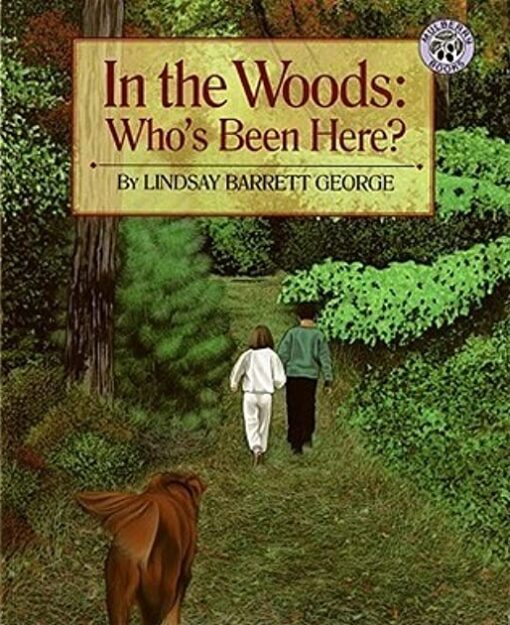 in-the-woods-whos-been-here
