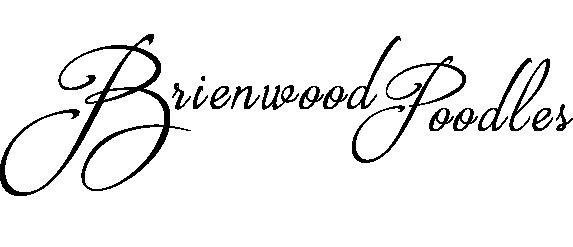 Brienwood Poodles