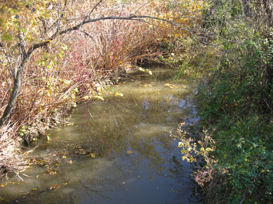 creek2