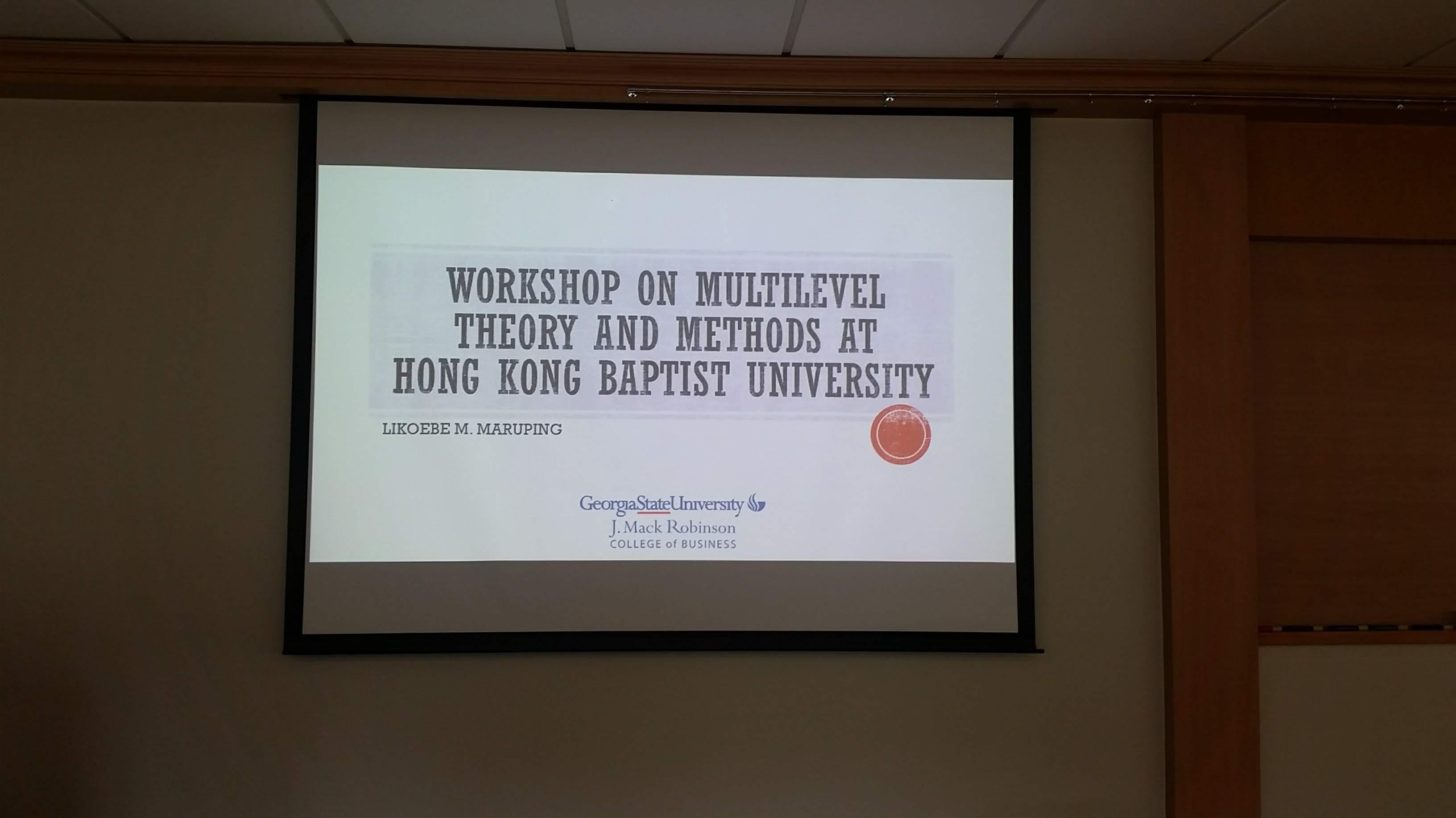 Workshop on Multilevel Theorizing and Analysis