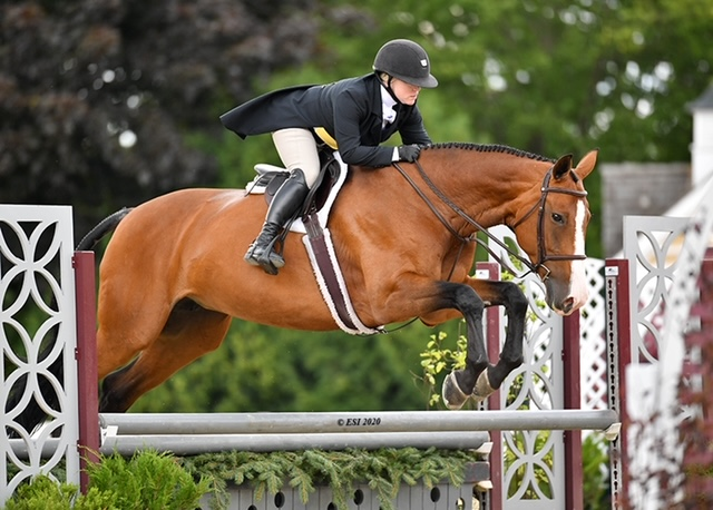 Carmen owned by Cathy Nelson