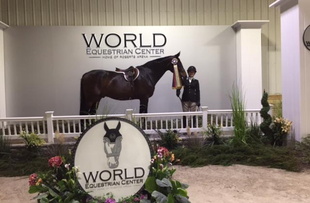 Emily Yslas at the World Equestrinan Center | April 2017