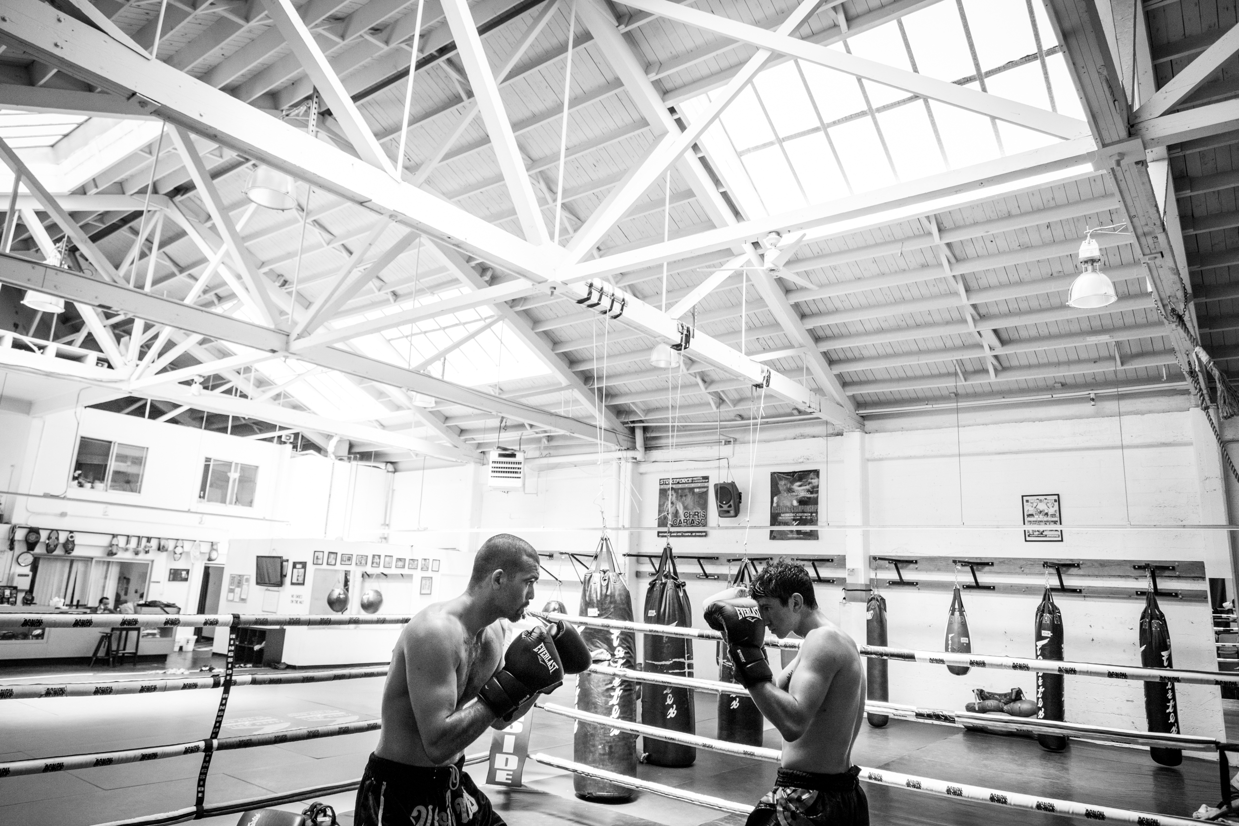 Fight & Fitness SF