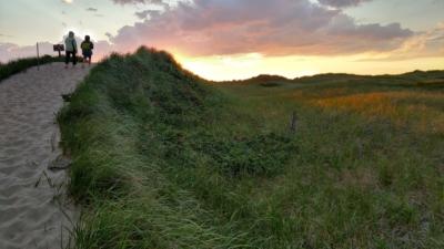 mindfulness nature