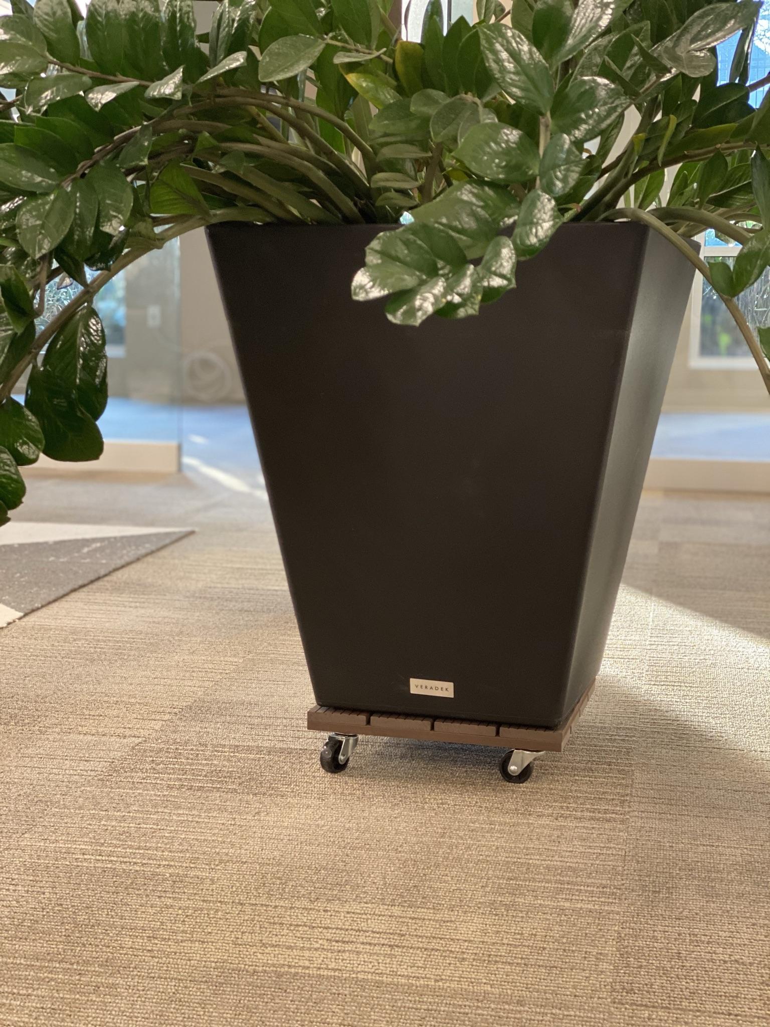 Agile Workspace - Plants On Wheels
