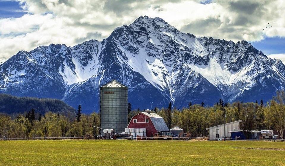 Pioneer Peak (Alaska)