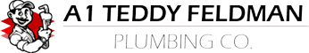 A1 TEDDY FELDMAN