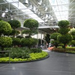 Devonian Gardens – A Floating Paradise | Arts & Design