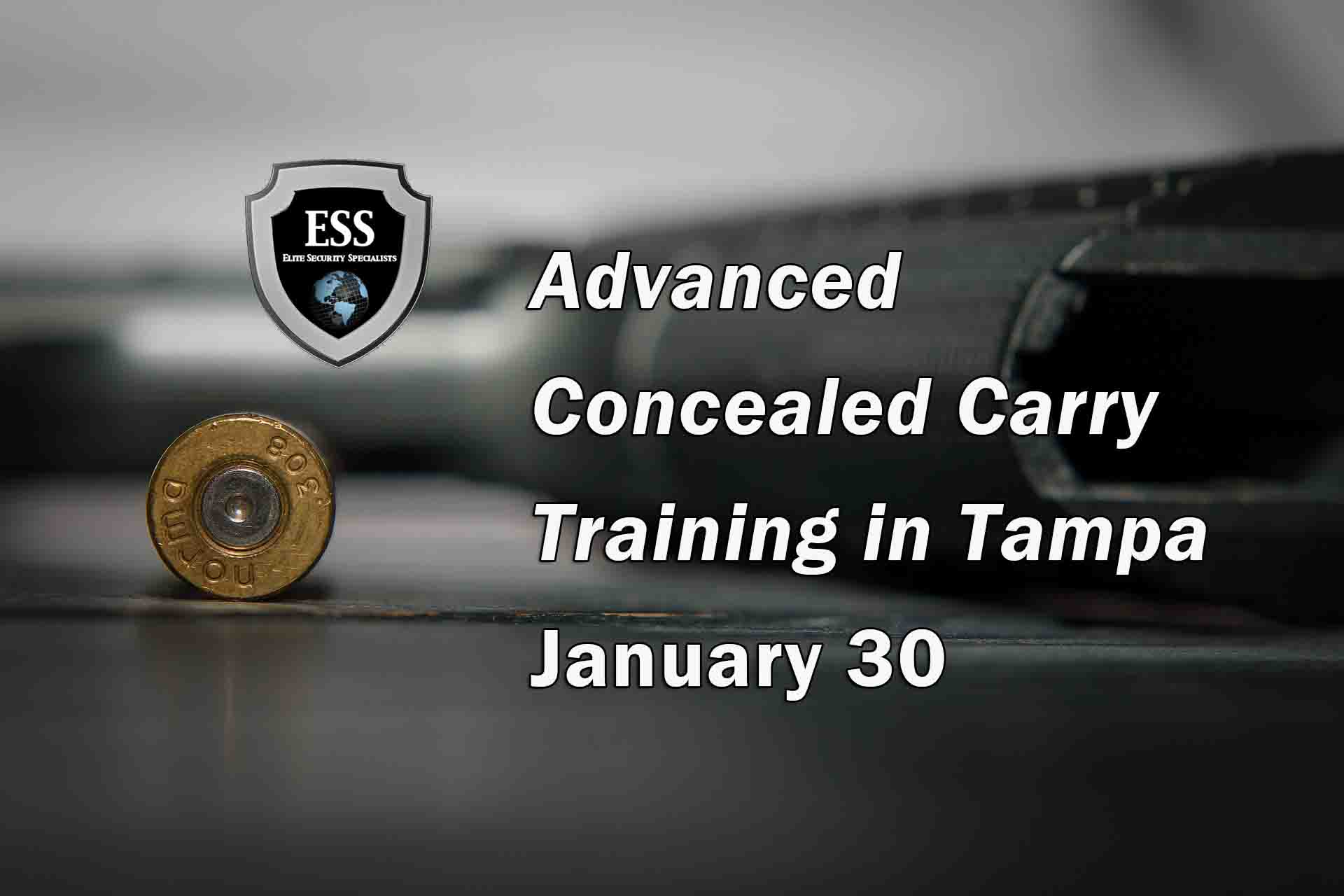Advanced Concealed Carry Training in Tampa JAN