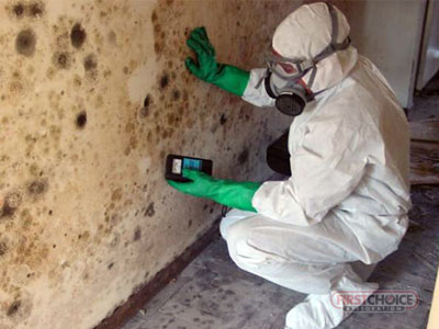 Mold Remediation Services in Philadelphia, PA – First Choice Restoration – Mold Removal Technician Image