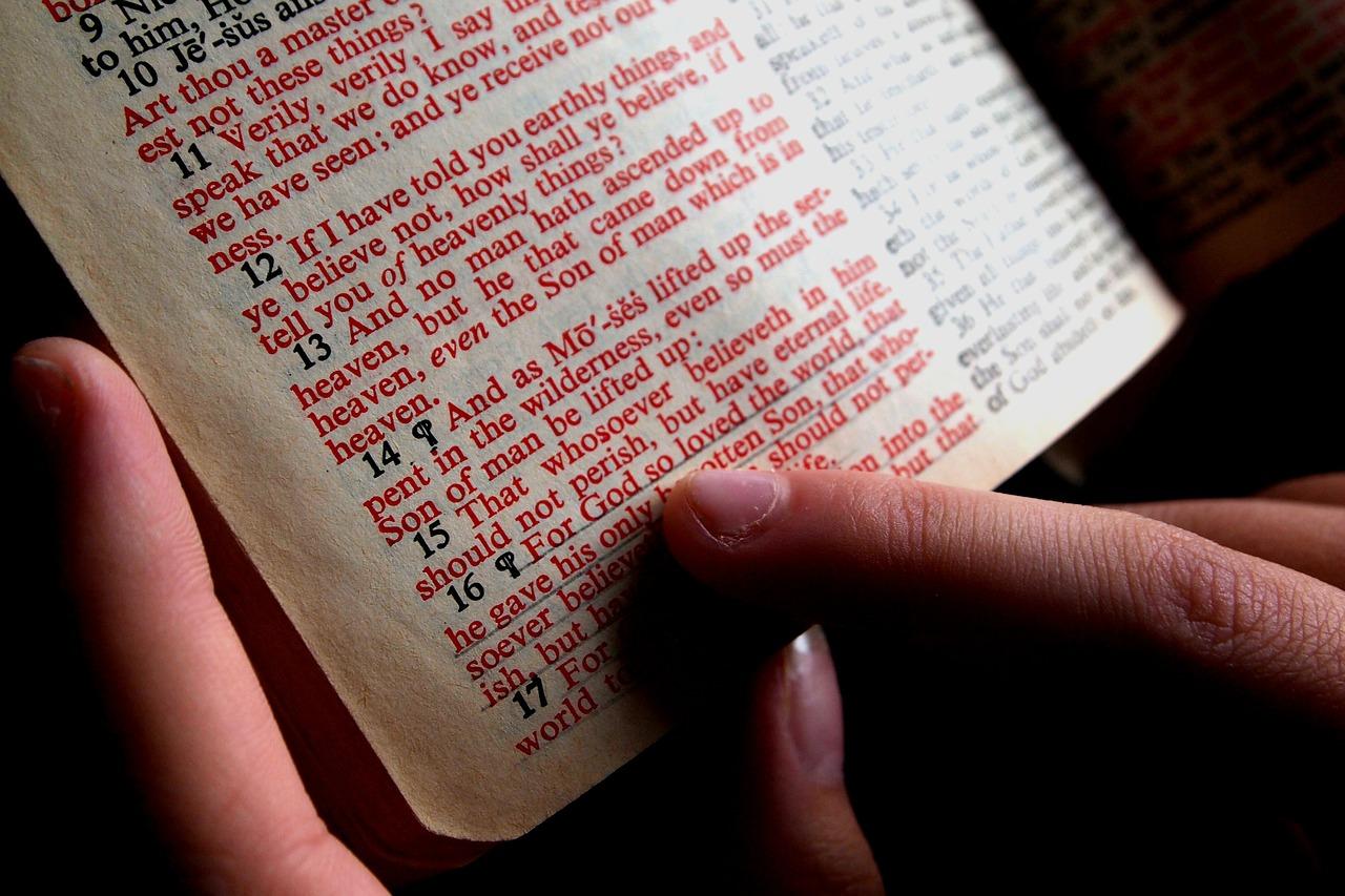 bible, bible study, hand-1089968.jpg
