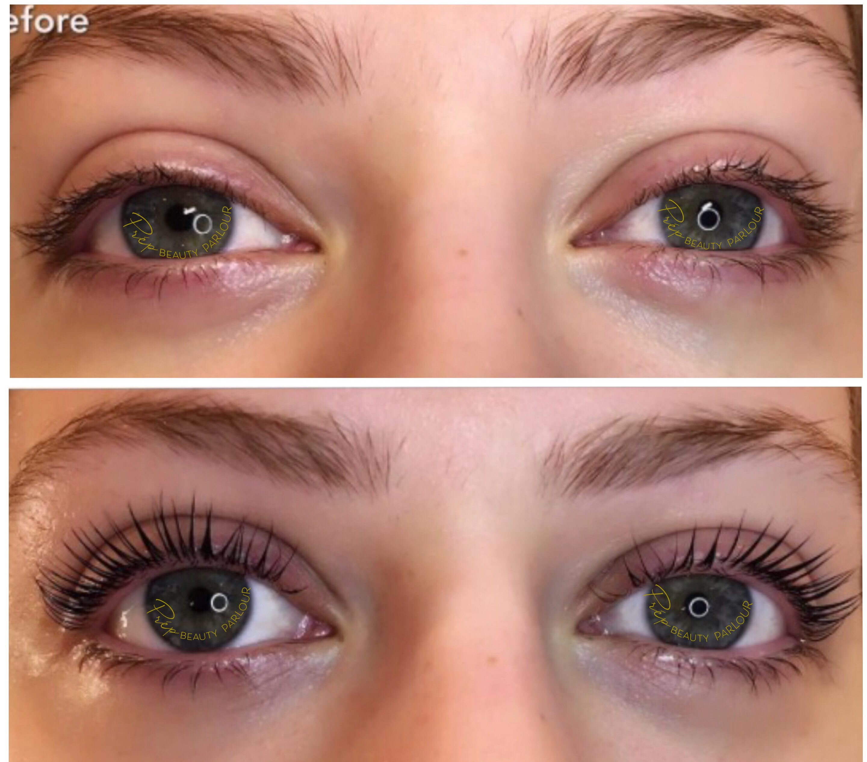 Best YUMI™ Lash Treatment Vancouver | Prép Beauty Parlour