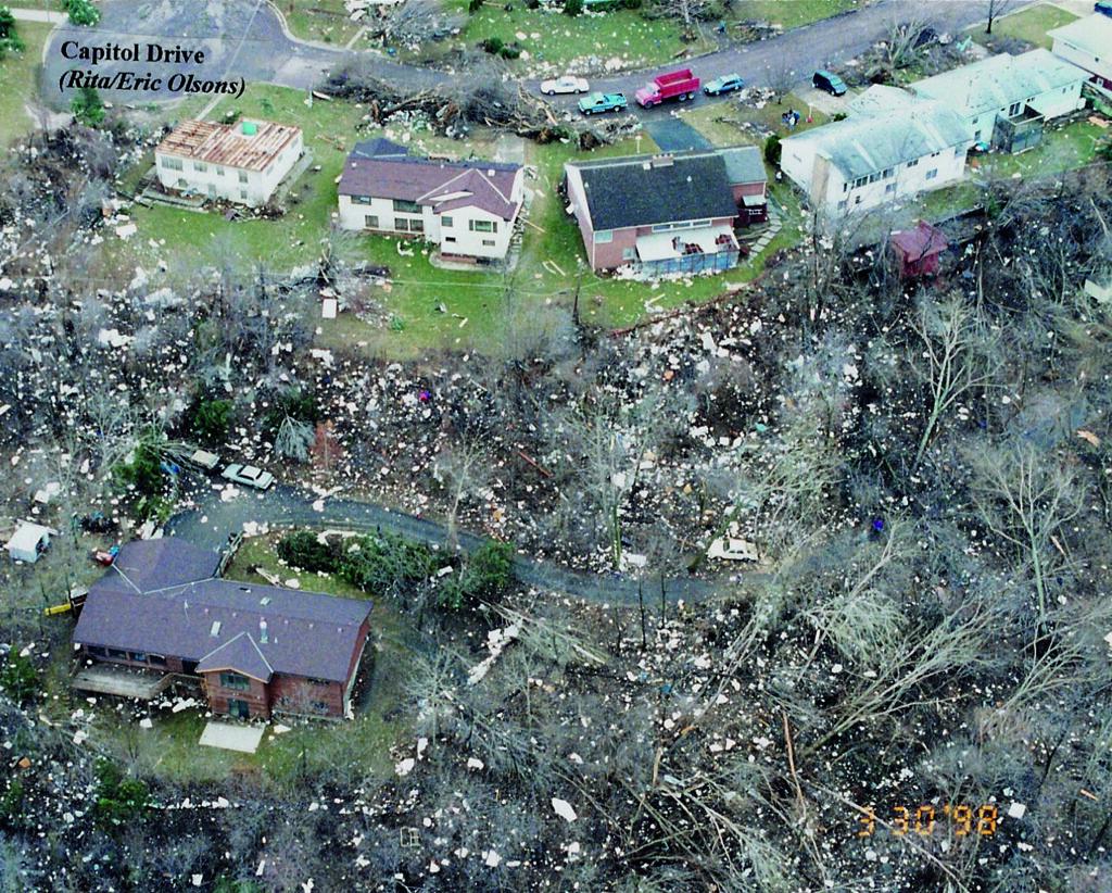 Tree damage on Capitol Drive
