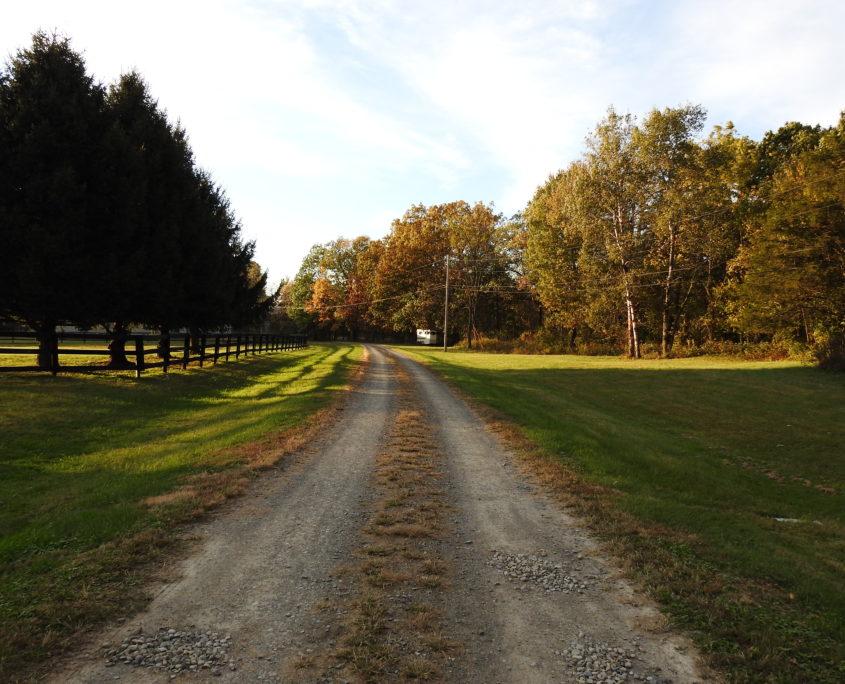photo of driveway