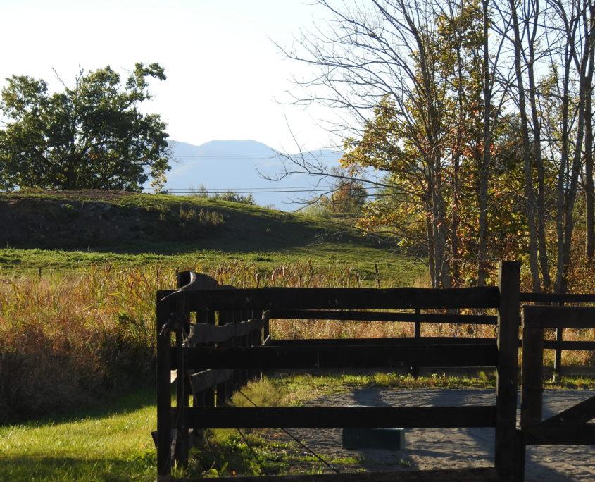 photo of mountain view