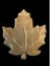indv_leaf