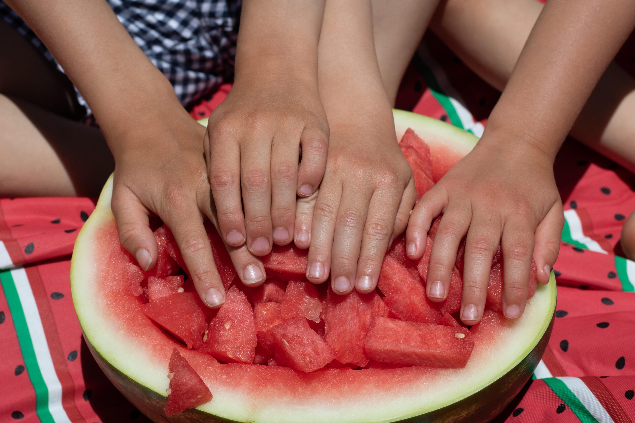 Kids; Family Photography; Watermelon