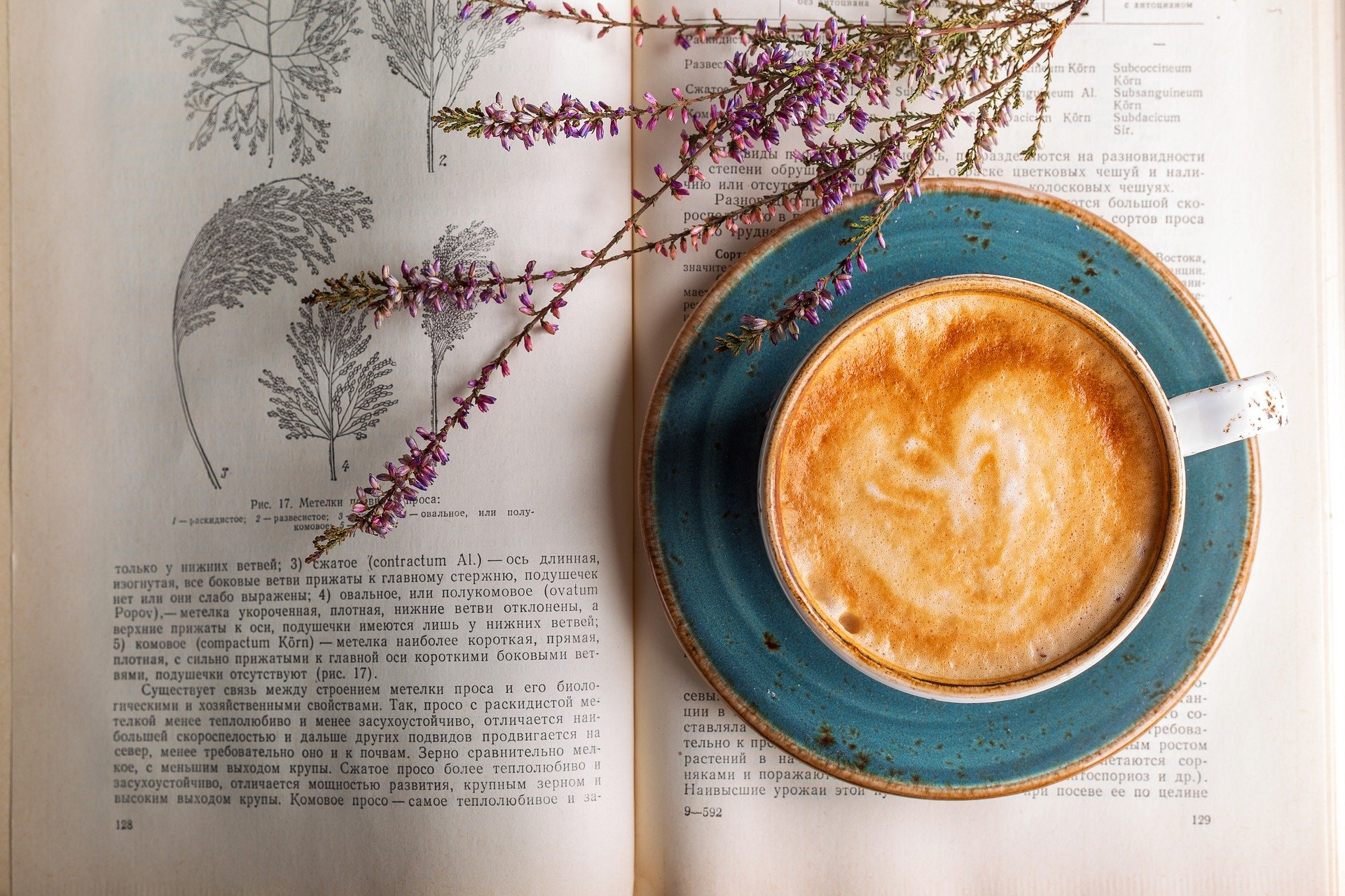 worst foods for PCOS - coffee