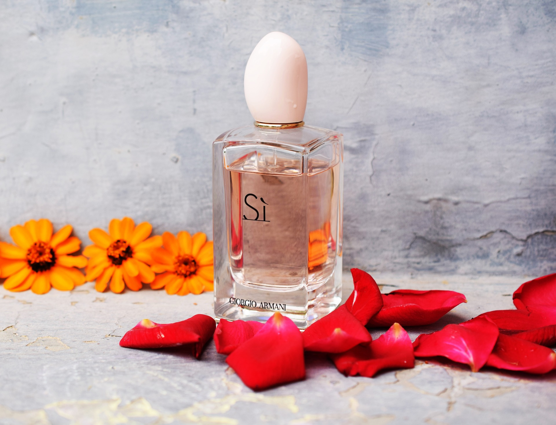 6 Best Rose Perfumes of All Time