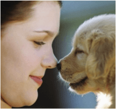 Dogs, health, mental health, depression, anxiety
