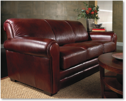 Leather surfaces are permeable. Over time the leather surface will absorb human and pet oils. All leather types should be maintained. We can clean many different leather hide finishes. Some of the these finishes that we clean include Aniline, Semi-Aniline, Nappa, Suede and Nubuck.