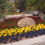 Montage Flowers-GPM Landscape