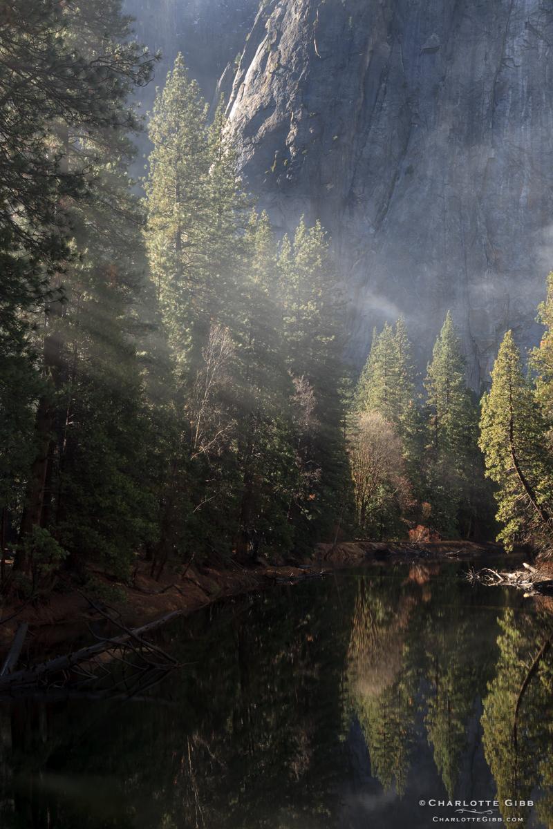 Merced River Mist, February 2014